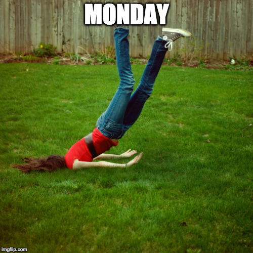 Yep. | MONDAY | image tagged in faceplant,monday | made w/ Imgflip meme maker