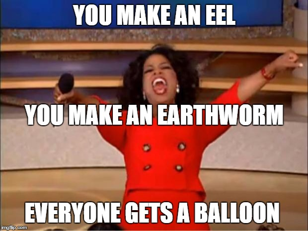 Oprah You Get A Meme | YOU MAKE AN EEL EVERYONE GETS A BALLOON YOU MAKE AN EARTHWORM | image tagged in memes,oprah you get a | made w/ Imgflip meme maker