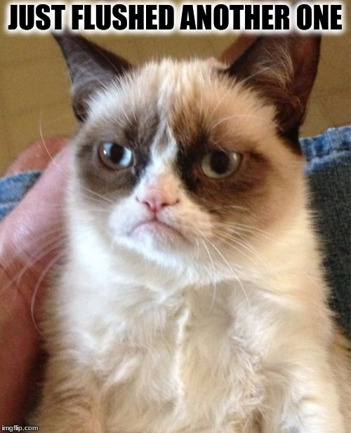 Grumpy Cat Meme | JUST FLUSHED ANOTHER ONE | image tagged in memes,grumpy cat | made w/ Imgflip meme maker