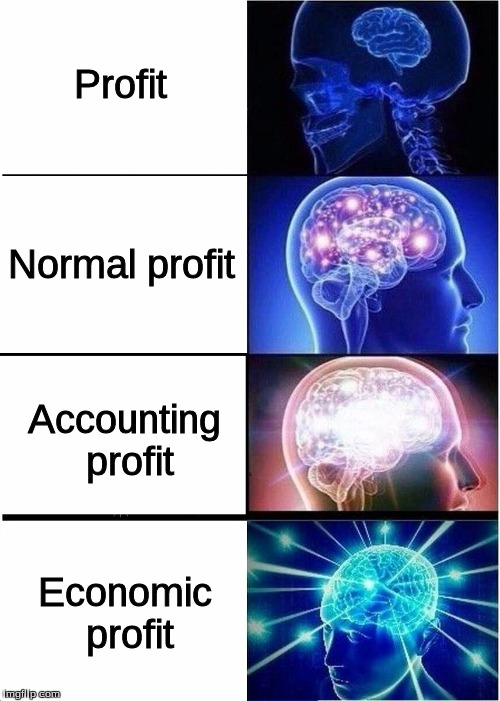 AP Microeconomics - Profit | Profit Normal profit Accounting profit Economic profit | image tagged in expanding brain,profit,normal profit,accounting profit,economic profit,ap econ | made w/ Imgflip meme maker