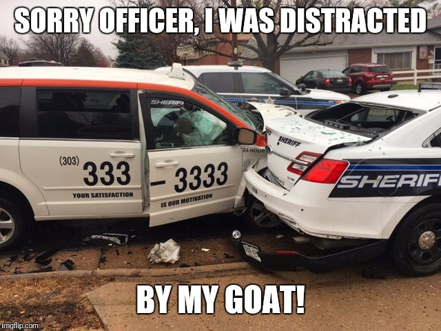 taxi sheriff | SORRY OFFICER, I WAS DISTRACTED BY MY GOAT! | image tagged in taxi sheriff | made w/ Imgflip meme maker