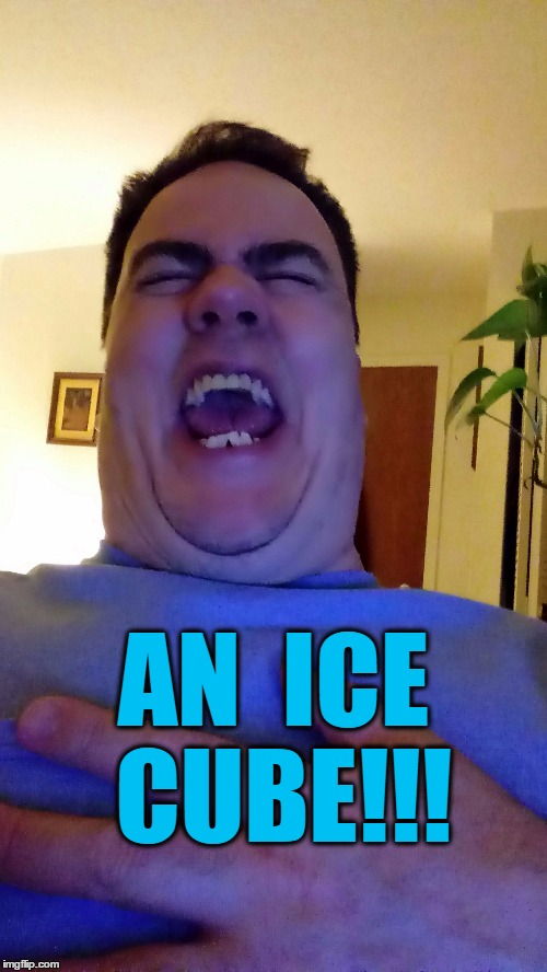 AN  ICE CUBE!!! | made w/ Imgflip meme maker