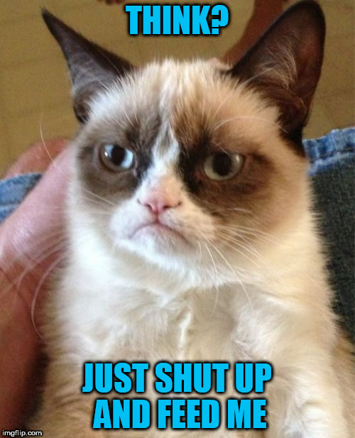 Grumpy Cat Meme | THINK? JUST SHUT UP AND FEED ME | image tagged in memes,grumpy cat | made w/ Imgflip meme maker