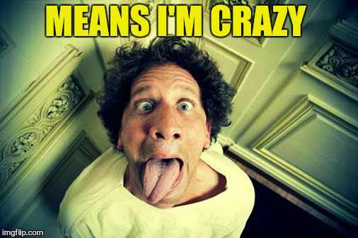 MEANS I'M CRAZY | made w/ Imgflip meme maker