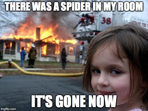 Disaster Girl Meme | THERE WAS A SPIDER IN MY ROOM IT'S GONE NOW | image tagged in memes,disaster girl | made w/ Imgflip meme maker