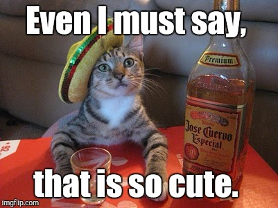 Tequila | Even I must say, that is so cute. | image tagged in tequila | made w/ Imgflip meme maker