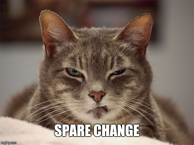 Sarcasm Cat | SPARE CHANGE | image tagged in sarcasm cat | made w/ Imgflip meme maker