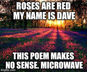 roses are red | ROSES ARE RED MY NAME IS DAVE THIS POEM MAKES NO SENSE. MICROWAVE | image tagged in roses are red | made w/ Imgflip meme maker