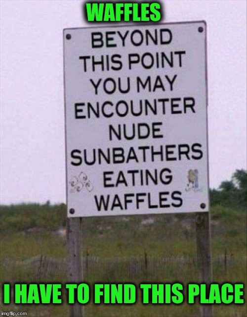 I Hope they're all Golden Brown Covered In Honey! | WAFFLES I HAVE TO FIND THIS PLACE | image tagged in memes,funny signs,custom template | made w/ Imgflip meme maker
