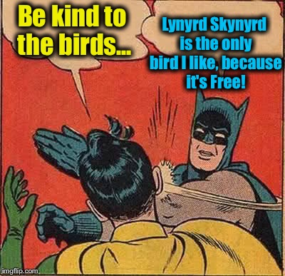 Batman Slapping Robin Meme | Be kind to the birds... Lynyrd Skynyrd is the only bird I like, because it's Free! | image tagged in memes,batman slapping robin | made w/ Imgflip meme maker
