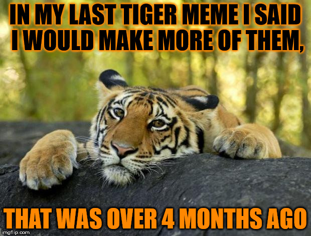 The horrible realisation of breaking my own promise, this time i will keep it. | IN MY LAST TIGER MEME I SAID I WOULD MAKE MORE OF THEM, THAT WAS OVER 4 MONTHS AGO | image tagged in confession tiger hi res,tiger,confession tiger | made w/ Imgflip meme maker
