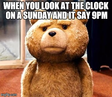 TED Meme | WHEN YOU LOOK AT THE CLOCK ON A SUNDAY AND IT SAY 9PM | image tagged in memes,ted | made w/ Imgflip meme maker