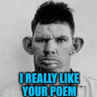 I REALLY LIKE YOUR POEM | made w/ Imgflip meme maker