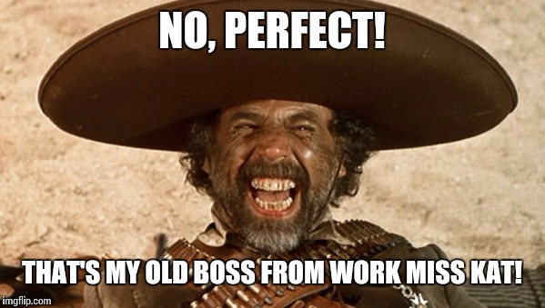 NO, PERFECT! THAT'S MY OLD BOSS FROM WORK MISS KAT! | made w/ Imgflip meme maker