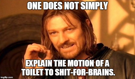 One Does Not Simply Meme | ONE DOES NOT SIMPLY EXPLAIN THE MOTION OF A TOILET TO SHIT-FOR-BRAINS. | image tagged in memes,one does not simply | made w/ Imgflip meme maker