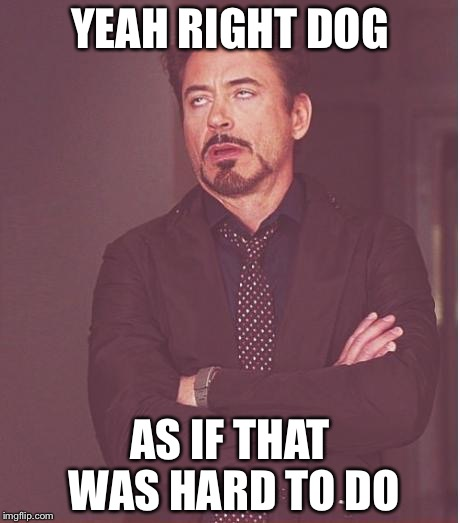 Face You Make Robert Downey Jr Meme | YEAH RIGHT DOG AS IF THAT WAS HARD TO DO | image tagged in memes,face you make robert downey jr | made w/ Imgflip meme maker