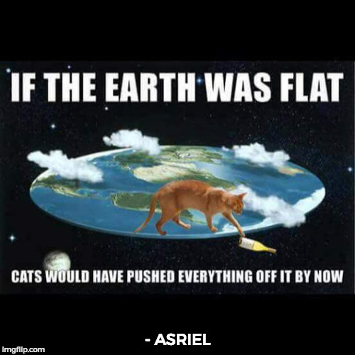 I think my mind has completely blown up to whoever made this meme. | - ASRIEL | image tagged in funny,memes,cats,common sense | made w/ Imgflip meme maker