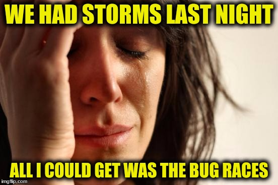 First World Problems Meme | WE HAD STORMS LAST NIGHT ALL I COULD GET WAS THE BUG RACES | image tagged in memes,first world problems | made w/ Imgflip meme maker