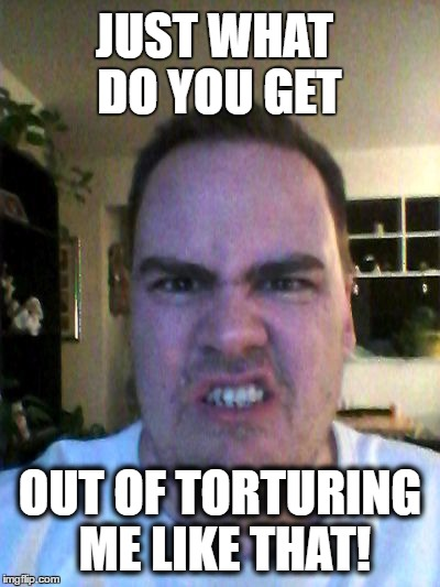 Grrr | JUST WHAT DO YOU GET OUT OF TORTURING ME LIKE THAT! | image tagged in grrr | made w/ Imgflip meme maker