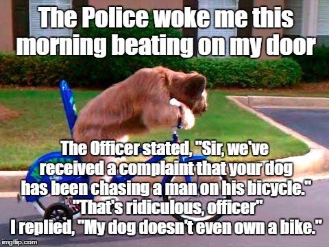 dog chasing man on bike Memes & GIFs - Imgflip