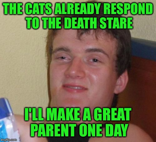 10 Guy Meme | THE CATS ALREADY RESPOND TO THE DEATH STARE I'LL MAKE A GREAT PARENT ONE DAY | image tagged in memes,10 guy | made w/ Imgflip meme maker