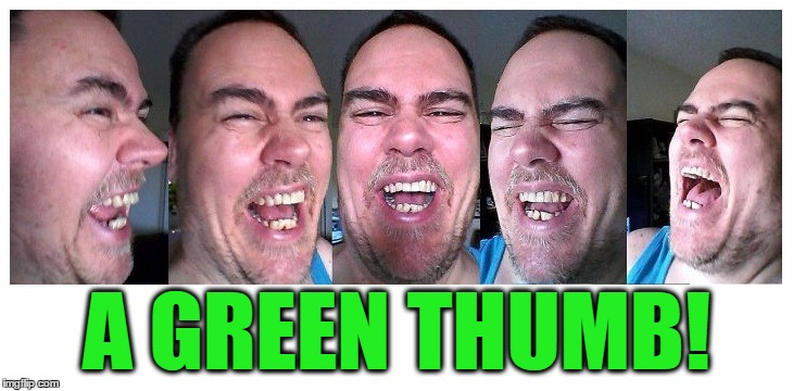 LOL | A GREEN THUMB! | image tagged in lol | made w/ Imgflip meme maker