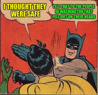 Batman Slapping Robin Meme | I THOUGHT THEY WERE SAFE TELL THAT TO THE PEOPLE IN WASHINGTON THAT FELL OUT ON THEIR HEADS | image tagged in memes,batman slapping robin | made w/ Imgflip meme maker