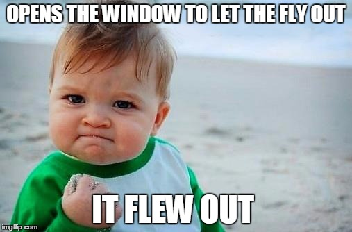 Victory Baby | OPENS THE WINDOW TO LET THE FLY OUT IT FLEW OUT | image tagged in victory baby | made w/ Imgflip meme maker