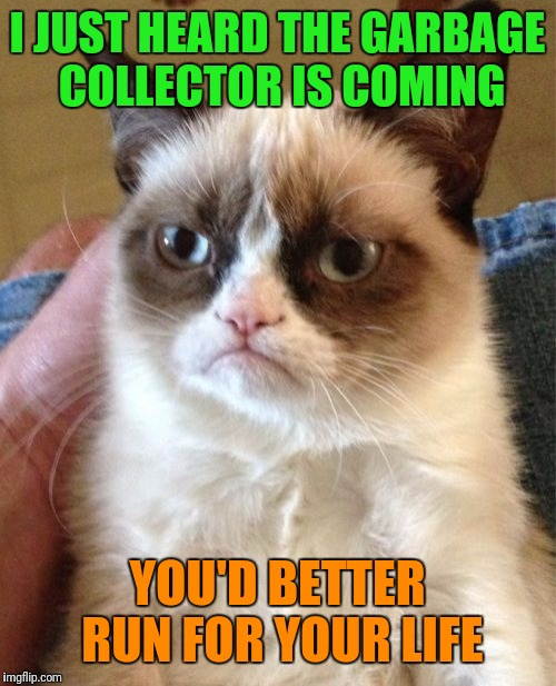 Run....Run For Your Life | I JUST HEARD THE GARBAGE COLLECTOR IS COMING YOU'D BETTER RUN FOR YOUR LIFE | image tagged in memes,grumpy cat,google chrome,garbage collector,run for your life,craziness_all_the_way | made w/ Imgflip meme maker