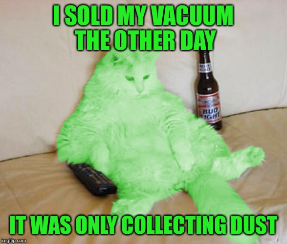 RayCat - unplugged | I SOLD MY VACUUM THE OTHER DAY IT WAS ONLY COLLECTING DUST | image tagged in raycat chillin',dashhopes,memes | made w/ Imgflip meme maker