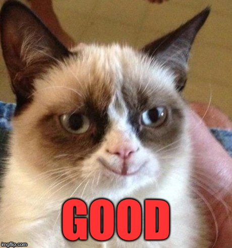 grumpy smile | GOOD | image tagged in grumpy smile | made w/ Imgflip meme maker