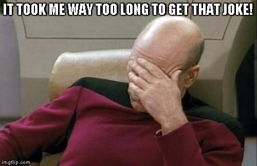 Captain Picard Facepalm Meme | IT TOOK ME WAY TOO LONG TO GET THAT JOKE! | image tagged in memes,captain picard facepalm | made w/ Imgflip meme maker