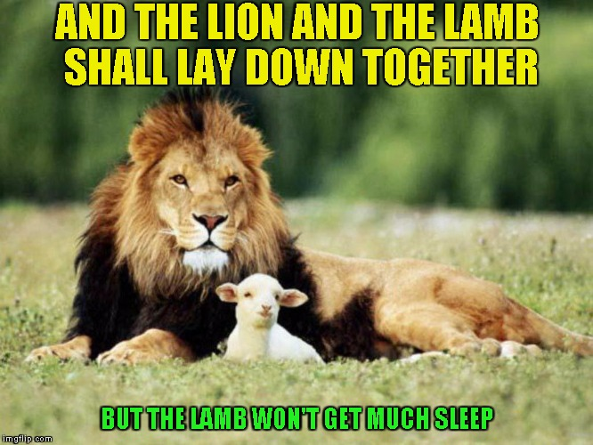 Its an old Woody Allen joke  | AND THE LION AND THE LAMB SHALL LAY DOWN TOGETHER BUT THE LAMB WON'T GET MUCH SLEEP | image tagged in lion and the lamb,old joke | made w/ Imgflip meme maker