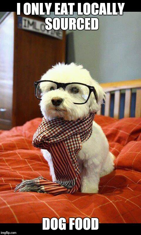 Hipster Dog | I ONLY EAT LOCALLY SOURCED DOG FOOD | image tagged in memes,intelligent dog,hipster | made w/ Imgflip meme maker
