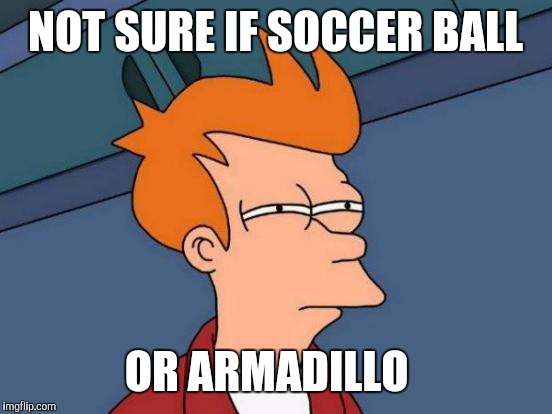Futurama Fry Meme | NOT SURE IF SOCCER BALL OR ARMADILLO | image tagged in memes,futurama fry | made w/ Imgflip meme maker