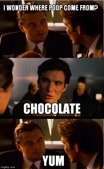Inception Meme | I WONDER WHERE POOP COME FROM? CHOCOLATE YUM | image tagged in memes,inception | made w/ Imgflip meme maker