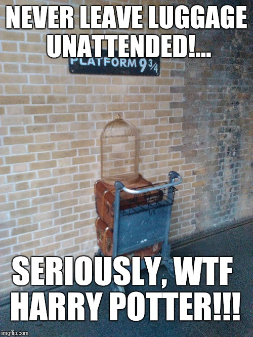 Seriously, how irresponsible Mr Potter!!! | NEVER LEAVE LUGGAGE UNATTENDED!... SERIOUSLY, WTF HARRY POTTER!!! | image tagged in potter,harry potter,funny memes,london kings cross | made w/ Imgflip meme maker