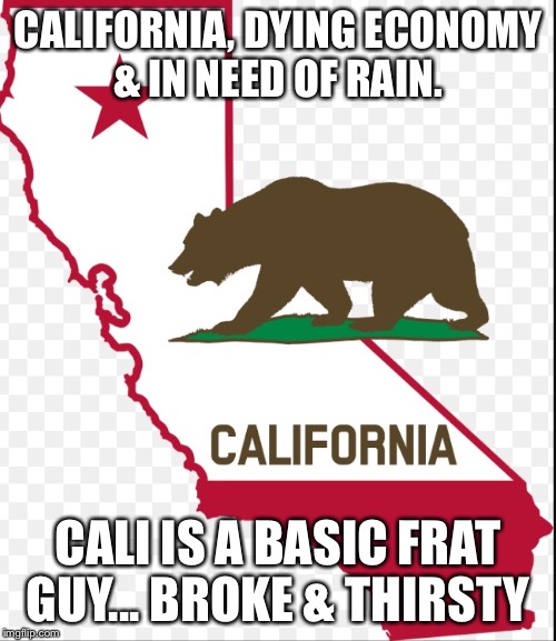 CALIFORNIA, DYING ECONOMY & IN NEED OF RAIN. CALI IS A BASIC FRAT GUY... BROKE & THIRSTY | image tagged in california,economy,fratboys | made w/ Imgflip meme maker