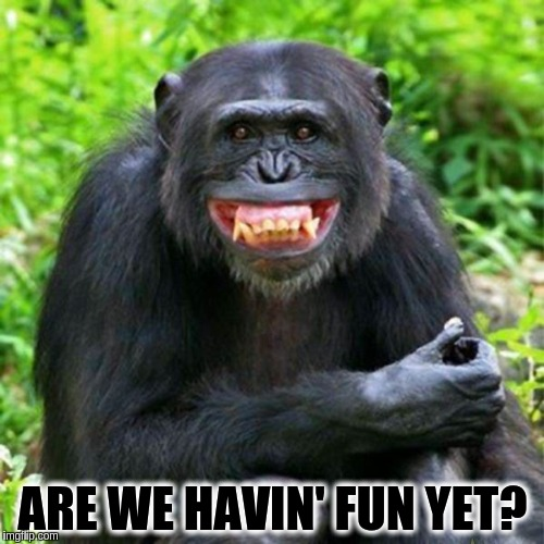 Keep Smiling |  ARE WE HAVIN' FUN YET? | image tagged in keep smiling | made w/ Imgflip meme maker
