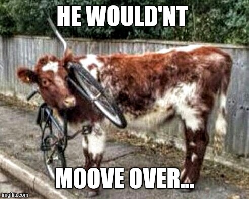 HE WOULD'NT MOOVE OVER... | image tagged in no regrets | made w/ Imgflip meme maker