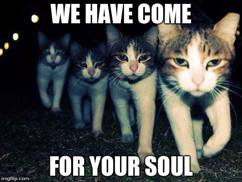 Wrong Neighboorhood Cats Meme | WE HAVE COME FOR YOUR SOUL | image tagged in memes,wrong neighboorhood cats | made w/ Imgflip meme maker