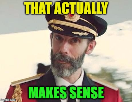 Captain Obvious | THAT ACTUALLY MAKES SENSE | image tagged in captain obvious | made w/ Imgflip meme maker