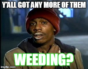 Y'all Got Any More Of That | Y'ALL GOT ANY MORE OF THEM WEEDING? | image tagged in memes,yall got any more of | made w/ Imgflip meme maker