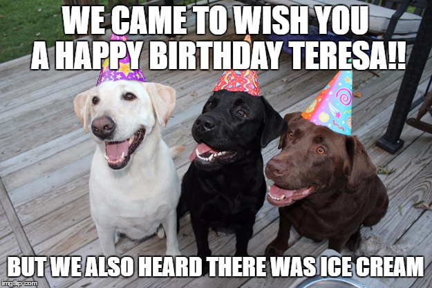 WE CAME TO WISH YOU A HAPPY BIRTHDAY TERESA!! BUT WE ALSO HEARD THERE WAS ICE CREAM | image tagged in labs,birthday | made w/ Imgflip meme maker