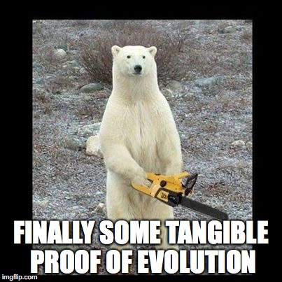 Chainsaw Bear Meme | FINALLY SOME TANGIBLE PROOF OF EVOLUTION | image tagged in memes,chainsaw bear | made w/ Imgflip meme maker
