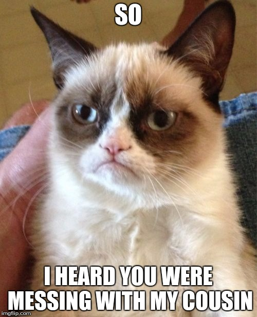 Grumpy Cat Meme | SO I HEARD YOU WERE MESSING WITH MY COUSIN | image tagged in memes,grumpy cat | made w/ Imgflip meme maker