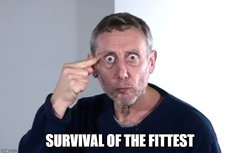 SURVIVAL OF THE FITTEST | image tagged in the original bear grills | made w/ Imgflip meme maker