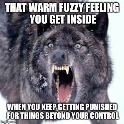 Angry Wolf | THAT WARM FUZZY FEELING YOU GET INSIDE WHEN YOU KEEP GETTING PUNISHED FOR THINGS BEYOND YOUR CONTROL | image tagged in angry wolf | made w/ Imgflip meme maker