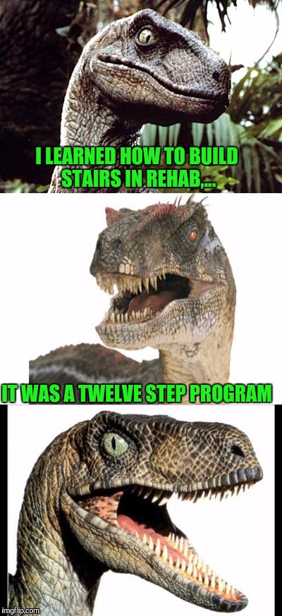 Bad Pun Velociraptor | I LEARNED HOW TO BUILD STAIRS IN REHAB,... IT WAS A TWELVE STEP PROGRAM | image tagged in bad pun velociraptor | made w/ Imgflip meme maker