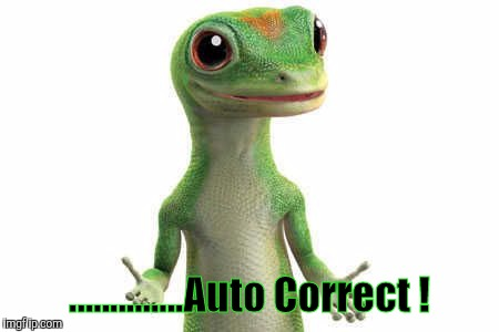 No excuses... | ..............Auto Correct ! | image tagged in no excuses | made w/ Imgflip meme maker